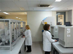 Root Disease Testing Service Laboratory