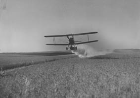 Aerial spraying of linseed crop near Alma
