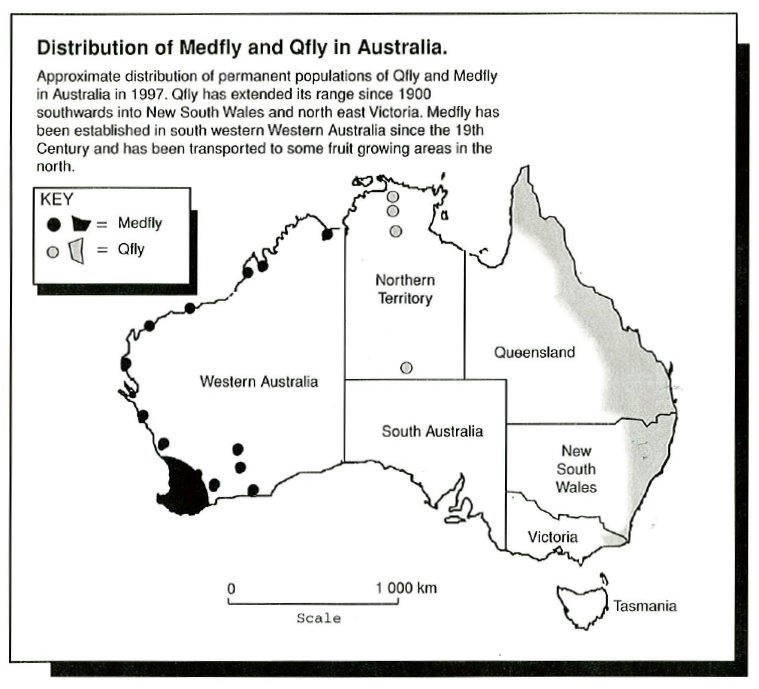 Distribution of Medfly and Qfly in Australia